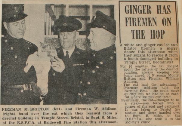 Evening Post 28th December 1959