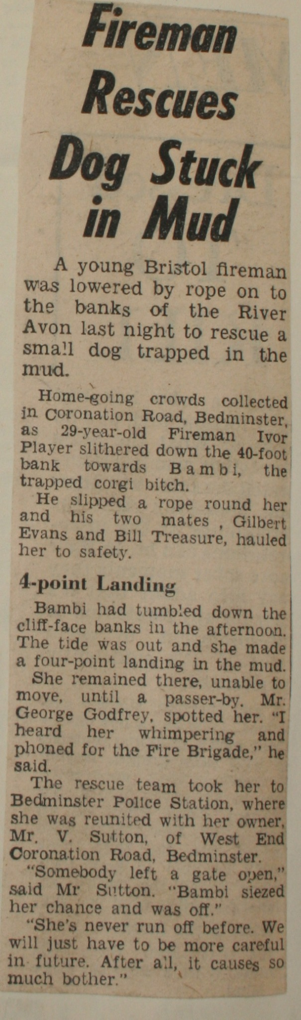 Evening World 17th Feb 1960